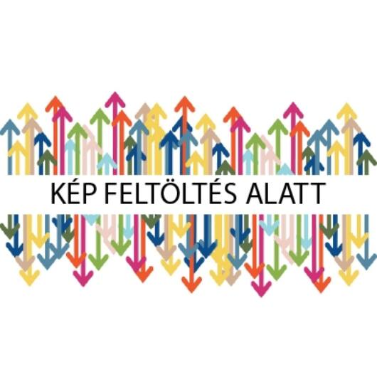 HP UNIVERZÁLIS CHIP Bk. TRK/C1 AX  (For use)